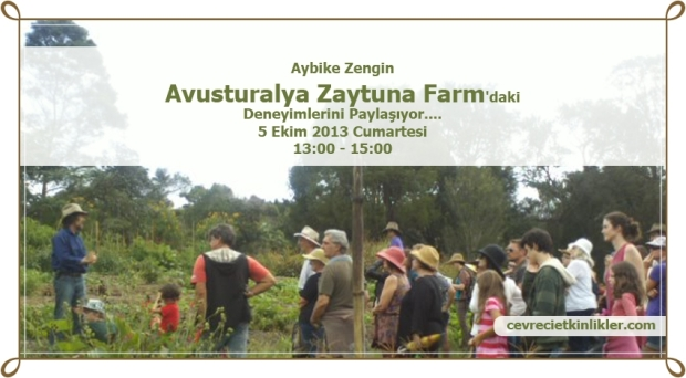 Aybike Zengin, Avusturalya Zaytuna Farm'daki Deneyimleri