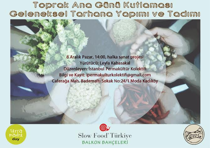 istanbul permakultur kolektifi