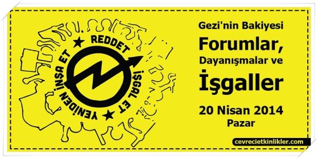 Gezi'nin Bakiyesi Forumlar, Dayanışmalar ve İşgaller