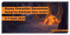 Kuzey Ormanları Savunması Kampı'na Katılmak İster misin?