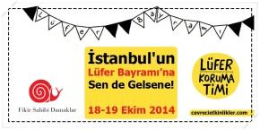 İstanbul'un Lüfer Bayramı'na Sen de Gelsene!