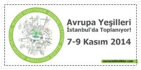 Avrupa Yeşilleri İstanbul'a geliyor