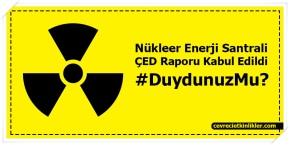nukleer-enerji-santrali-ced-raporu-kabul-edildi