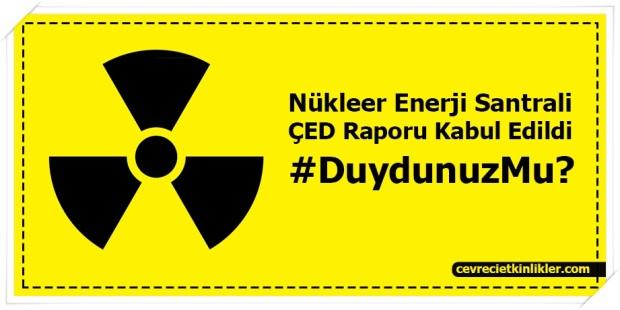 nukleer-Enerji-santralleri-ced-Edildi Raporu Kabil